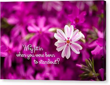 Why Fit In When You Were Born To Standout Canvas Print by Teri Virbickis