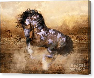 Wild And The Free Canvas Print by Shanina Conway