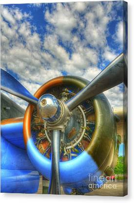 Wild Blue Yonder 3 Canvas Print by Mel Steinhauer