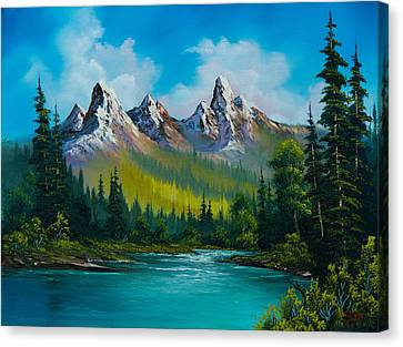 Wild Country  Canvas Print by C Steele