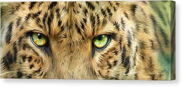 Wild Eyes - Leopard Canvas Print by Carol Cavalaris