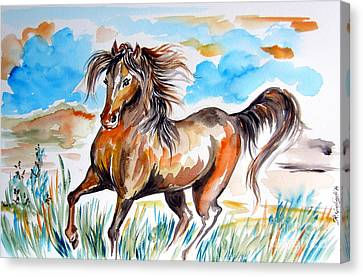 Wild Mustang Water Color Canvas Print by Roberto Gagliardi
