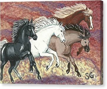 Wild Mustangs -- Cresting The Ridge Canvas Print by Sherry Goeben