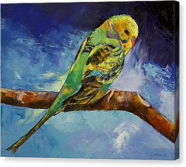 Wild Parakeet Canvas Print by Michael Creese