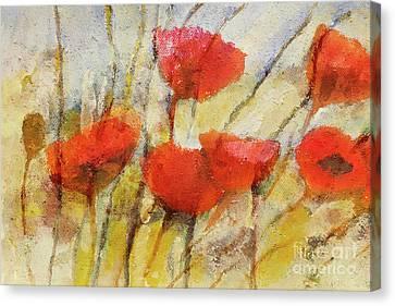 Wild Poppies Canvas Print by Lutz Baar