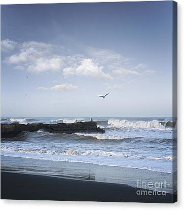 Wild Seascape With Old Jetty And Seagulls Overhead  Canvas Print by Colin and Linda McKie