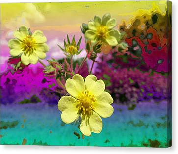 Wildflower Abstract Canvas Print by Mike Breau