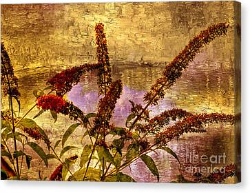 Wildflowers At The Pond Canvas Print by Elaine Manley
