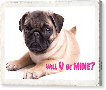 Will U Be Mine? Canvas Print by Edward Fielding