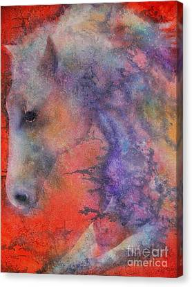 Wind Horse Canvas Print by Robert Hooper