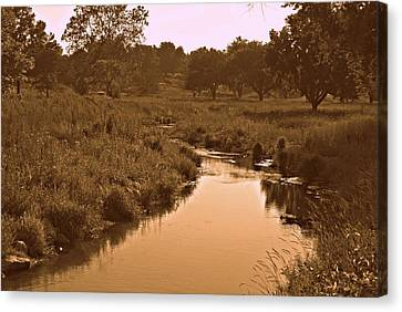 Winding Creek Canvas Print by Dawdy Imagery