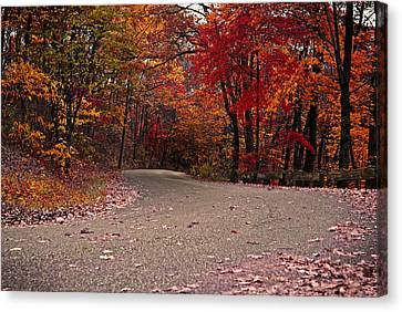 Winding Road Canvas Print by Caitlyn Hymer