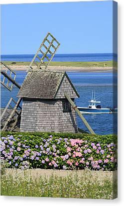 Windmill And Hydrangeas Chatham Waterfront Cape Cod Canvas Print by John Burk