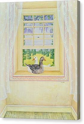 Window Geese Canvas Print by Ditz