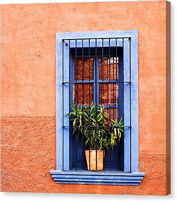 Window In San Miguel De Allende Mexico Square Canvas Print by Carol Leigh