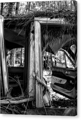 Window Vine In Black And White Canvas Print by Greg Mimbs