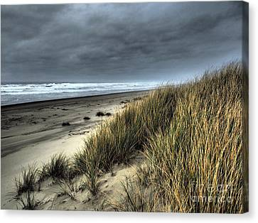 Windswept Canvas Print by Parrish Todd