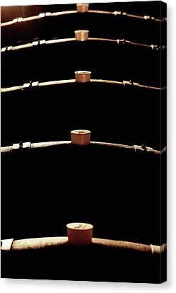 Wine Barrels Canvas Print by Mauro Fermariello