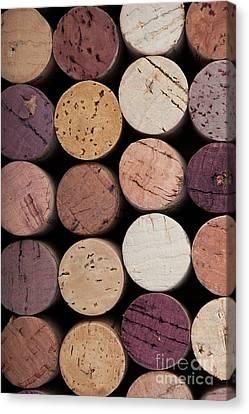 Wine Corks 1 Canvas Print by Jane Rix