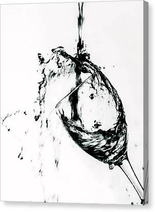 Wine Pour Splash In Black And White Canvas Print by JC Kirk