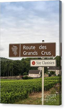 Wine Route Sign In France Canvas Print by Patricia Hofmeester
