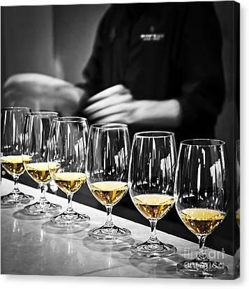 Wine Tasting Glasses Canvas Print by Elena Elisseeva