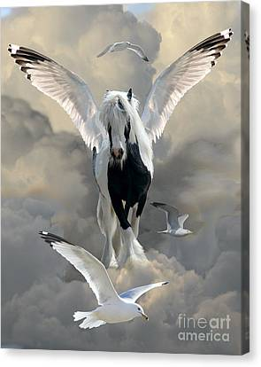 Wings And Feathers Canvas Print by Judy Wood
