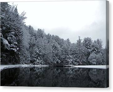 Winter At Clear Creek Canvas Print by Anthony Thomas
