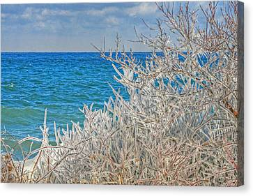 Winter Beach Canvas Print by Michael Allen