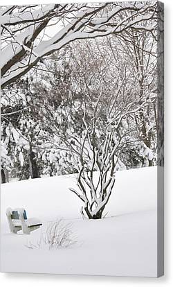 Winter Bench Canvas Print by Frederico Borges