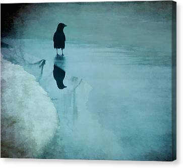 Winter Blues Canvas Print by Gothicolors Donna Snyder