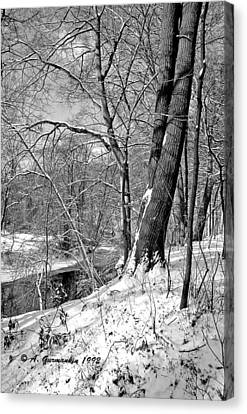Canvas Print featuring the photograph Winter By A Pennsylvania Stream by A Gurmankin