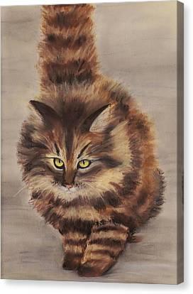 Winter Cat Canvas Print by Anastasiya Malakhova