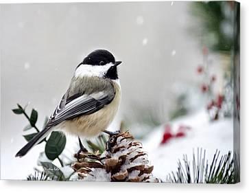 Winter Chickadee Canvas Print by Christina Rollo