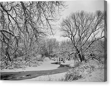 Winter Creek In Black And White Canvas Print by James BO  Insogna