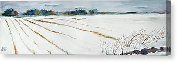 Winter Crop Canvas Print by Scott Nelson