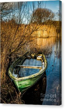 Winter Decay Canvas Print by Adrian Evans