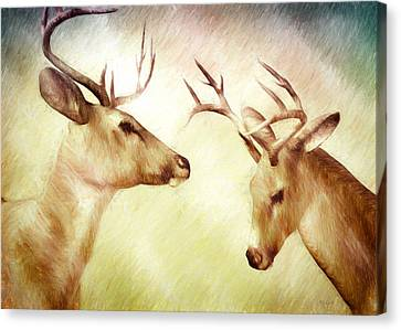 Winter Deer Canvas Print by Bob Orsillo