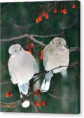Winter Doves Canvas Print by Betty LaRue