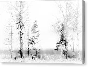 Winter Drawing Canvas Print by Jenny Rainbow