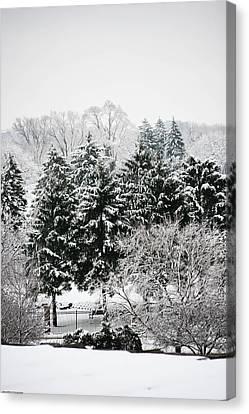 Winter Dream Canvas Print by Allan Millora