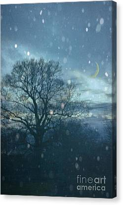 Winter Evening Canvas Print by Jan Bickerton