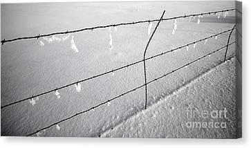 Winter Fence Harney Oregon Canvas Print by Michele AnneLouise Cohen