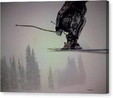 Winter Flight Canvas Print by George Pedro