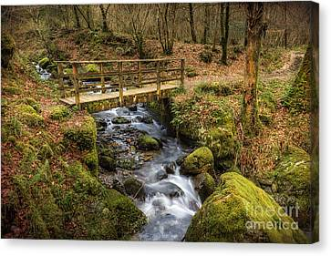 Winter Footbridge Canvas Print by Adrian Evans
