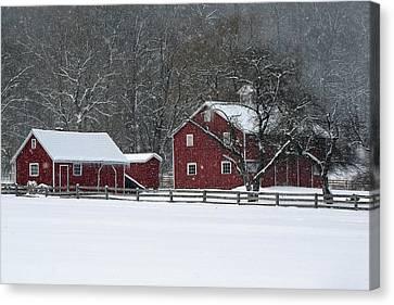 Winter In The Park Canvas Print by Ann Bridges