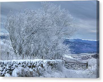 Winter Landscape Near Buxton Canvas Print by David Birchall
