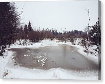 Winter Landscape With Trees And Frozen Pond Canvas Print by Matthias Hauser