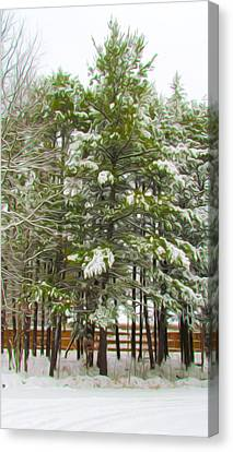 Winter Landscapes Canvas Print by Lanjee Chee