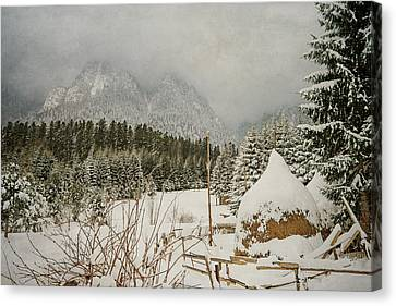Winter Mood Canvas Print by Cristina-Velina Ion